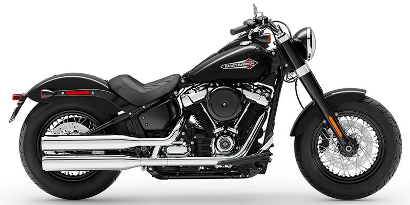 New 2019 Harley-Davidson Slim